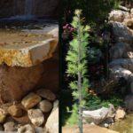 WATERFALLS & CREEKS